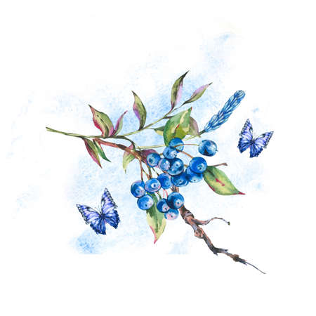 Watercolor summer forest bunch of dark blue berries, green leaves, butterfly.