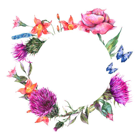Watercolor thistle, poppy, blue butterflies, wild flowers round frame, meadow herbs.