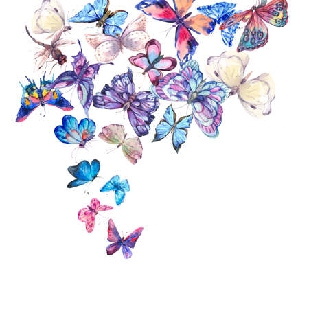 Watercolor butterflies vintage card, Colorful nature abstract illustration isolated on white