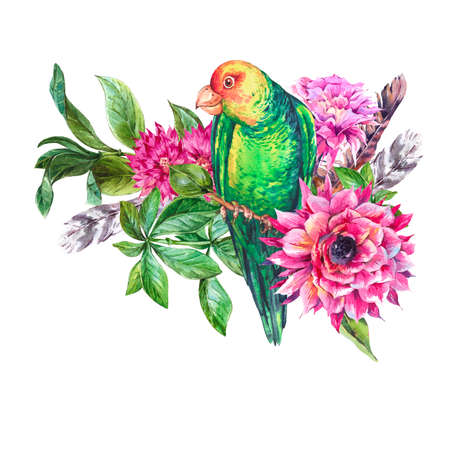 Tropical watercolor vintage greeting card with pink flowers and green parrot. Exotic flora, twigs and leaves tropic birds. Botanical bright classic natural collection isolated on white background Reklamní fotografie