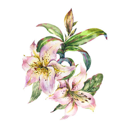 White Lily, Watercolor Royal Lilies Flowers Greeting Card Zdjęcie Seryjne
