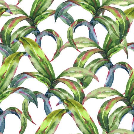Watercolor Seamless Exotic  with Tropical Leaves Zdjęcie Seryjne