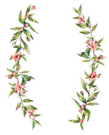 Watercolor Myrtle. Vintage Watercolor Wreath with Green Leaves, Twigs, Berries, Branches of Myrtle. Zdjęcie Seryjne