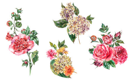 Watercolor Vintage Floral Set of Bouquet with Pink Roses, Hydrangea, Snail and Wild Flowers, Botanical Collection, Watercolor Bohemian illustration Isolated on White Background