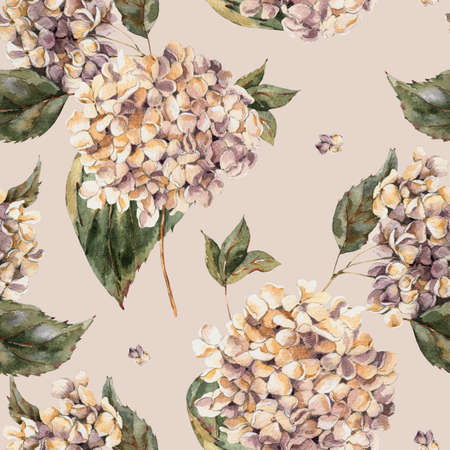 Watercolor Vintage Floral Seamless Pattern with Blooming White Hydrangea, Watercolor botanical natural hydrangea texture on beige background.