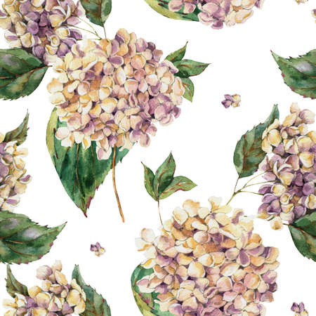 Watercolor Vintage Floral Seamless Pattern with Blooming White Hydrangea, Watercolor botanical natural hydrangea texture on white background.