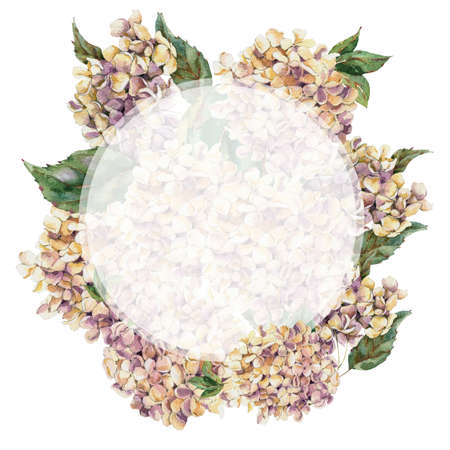 Watercolor Vintage Floral Round Frame with Blooming White Hydrangea, Watercolor botanical natural hydrangea Illustration. Isolated natural elements