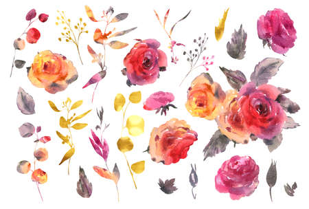 Set of watercolor red, yellow gold watercolor roses - flowers, twigs, leaves, buds. Hand painted vintage floral collection isolated on white background. Banco de Imagens