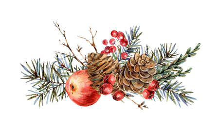 Watercolor Christmas natural greeting card of fir branches, red apple, berries, pine cones, vintage botanical  isolated on white Banco de Imagens - 134548059