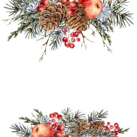 Watercolor Christmas natural template of fir branches, red apple, berries, pine cones, vintage botanical greeting card isolated on white Banco de Imagens - 134548061