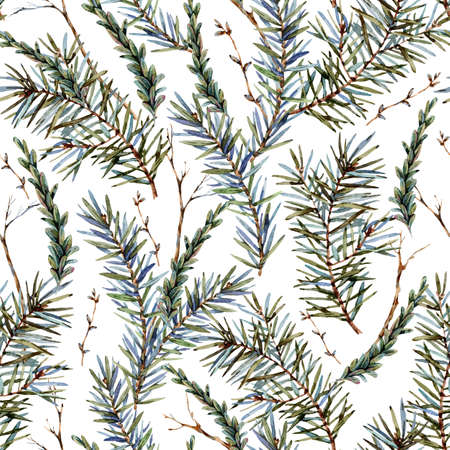 Watercolor forest seamless  with sprig of fir trees. Banco de Imagens - 134547962