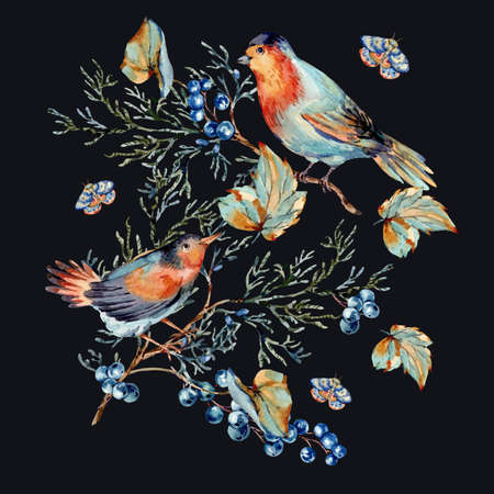 Watercolor woodland birds with blue berries, moth and fir branches. Forest natural illustration isolated on black background.