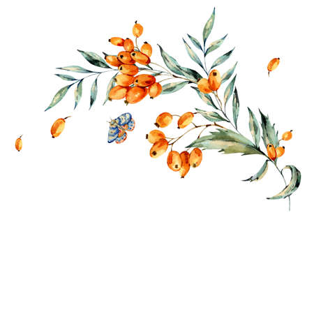 Watercolor bouquet with autumn orange berries and blue moth, natural greeting card. Hand painted vintage floral illustration isolated on white background. Banco de Imagens - 136414172