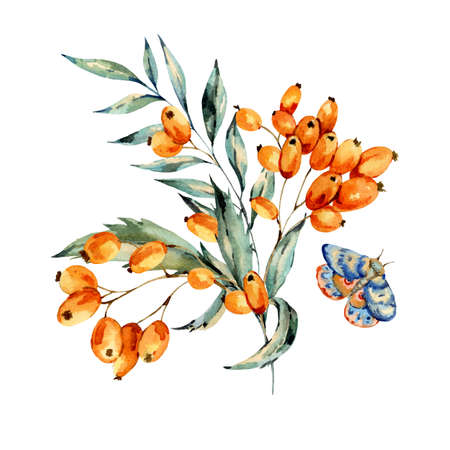 Watercolor bouquet with autumn orange berries and blue moth, natural greeting card. Hand painted vintage floral illustration isolated on white background. Banco de Imagens - 136414940