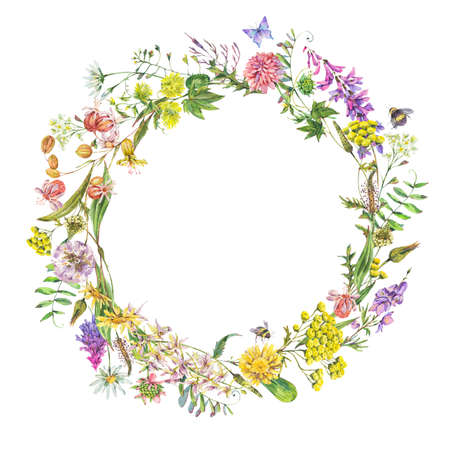 Vintage watercolor summer meadow wildflowers wreath. Botanical floral greeting card isolated on white background, natural frame. Medicinal flowers collection