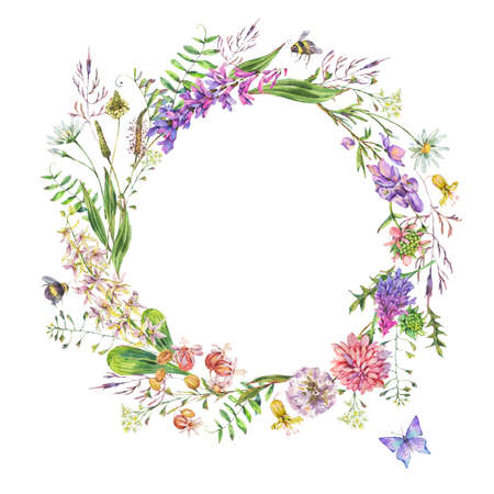 Vintage watercolor summer purple meadow wildflowers wreath. Botanical floral round frame on white background, natural objects. Medicinal flowers illustration Stock Photo