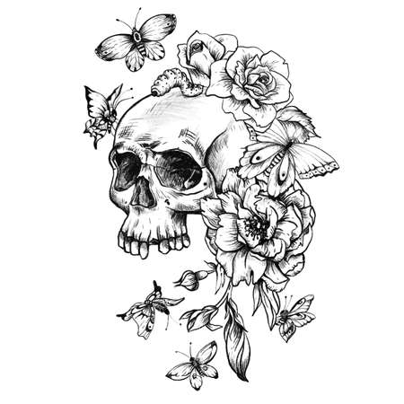 Vintage goth skull with butterdlies and flowers isolated on white background. Dead of the dead illustration. Stockfoto - 159014737