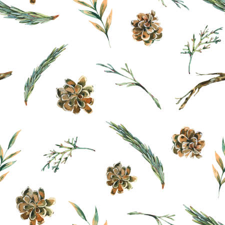 Watercolor forest fir branches seamless pattern with pine cones. Natural woodland texture. Botanical wallpaper on white background