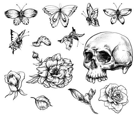 Vintage goth skull design element set with butterdlies and flowers isolated on white background. Dead of the dead ccollection.