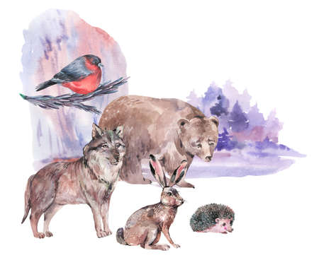 Watercolor winter forest animals. Bear, wolf, hare, hedgehog isolated on white background. Woodland creatures. Stockfoto