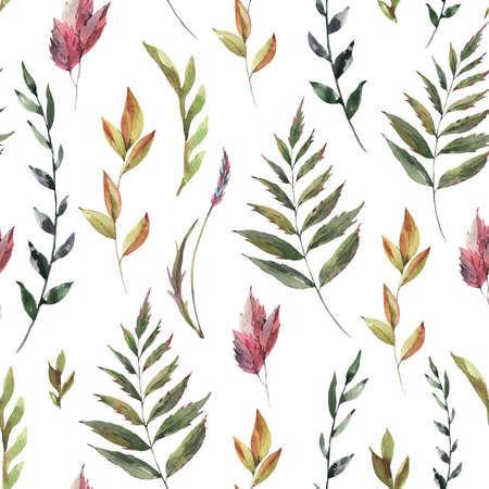 Watercolor vintage floral summer seamless pattern. Natural botanical texture on white background. Dry flowers wallpaper