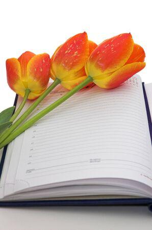 przypominać: Tulipany na notebooku - przypominaj mi specjalnego wydarzenia