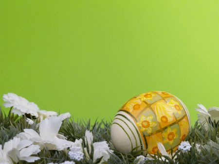 dacorated: handpainted daffodil design on easter egg, artificial grass and blossoms, green background