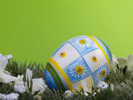 dacorated: handpainted daisy design on easter egg, artificial grass and blossoms, green background
