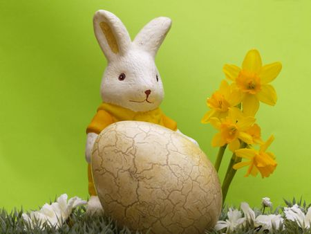 easter egg and bunny with dwarf daffodils on artificial grass and blossoms, green background Stock Photo - 4408023