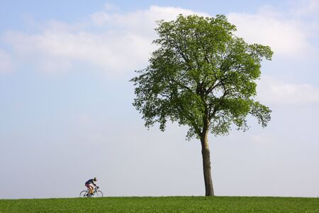 bicyclist passing a lonely tree at horizon