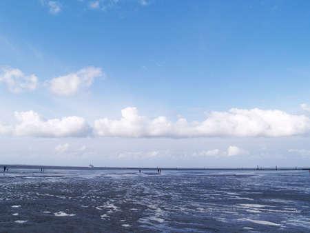 falling tide: low tide tideland