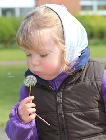 little girl with dandelion on a sunny spring day photo
