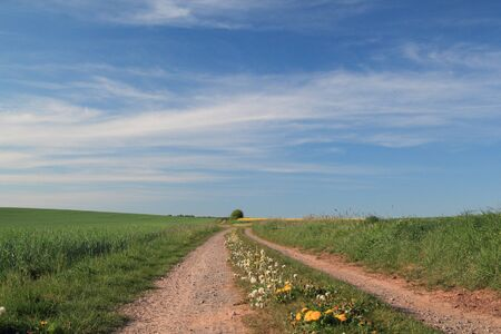 dirt track in rural landscape, germany Stock Photo - 12066252