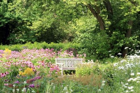 purpurea: white bench in a beautiful garden Stock Photo