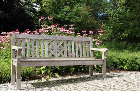 purpurea: wooden bench in a beautiful garden