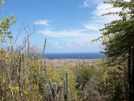 curacao: curacao coast