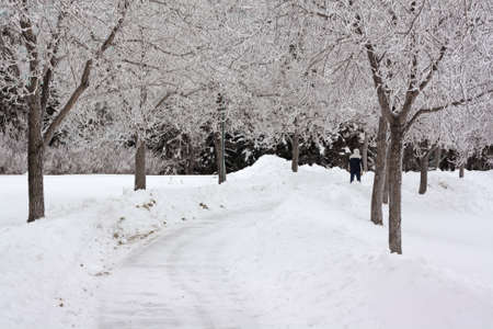 regina: A man walking in on snow covered steets during winter in Regina, Canada Stock Photo