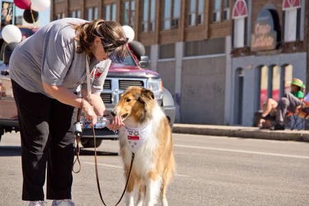 ex: A young woman giving water to a thirsty dog at the Queen City Ex Parade Editorial