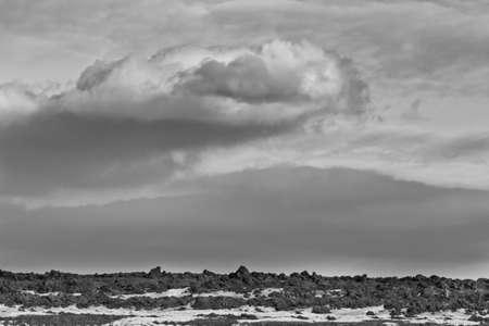 サスカチュワン州の穏やかな冬の日の美しいフラット土地 写真素材 - 12542942