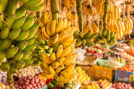 Ripe and green banana bunch hanging at a local fruit and vegetable market in Kenya, Nairobi Banco de Imagens