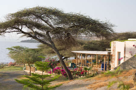 clam gardens: A tranquil, green and peaceful place by shores of lake Langano in Ethiopia Editorial