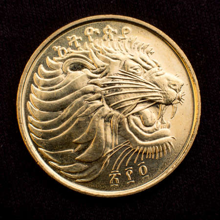 Lion on the face of the Ethiopian ten cent coin