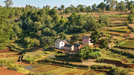 Houses made of bricks on a hilly landscape alongside a typical Malagasy rice farm