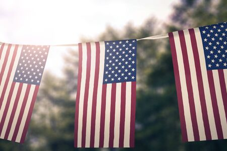 Flag of United States hanging pennants