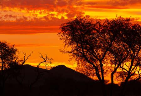 silueta del paisaje africano contra una puesta de sol mágica