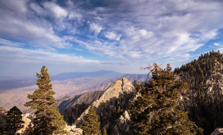 jeffrey: San Jacinto Peak View