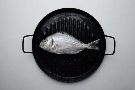 dorada: Wild dorada isolated on black grill pan Stock Photo