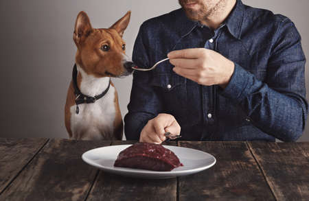 Young bearded man shares small piece of big raw luxiry whale meat steak on vintage fork with his beautiful african dog. Dog smells meat.