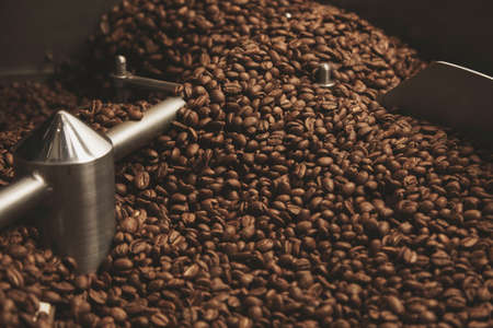 Dark, aromatic, chocolate coffee beans freshly baked and hot cool down inside the best professional roasting machine