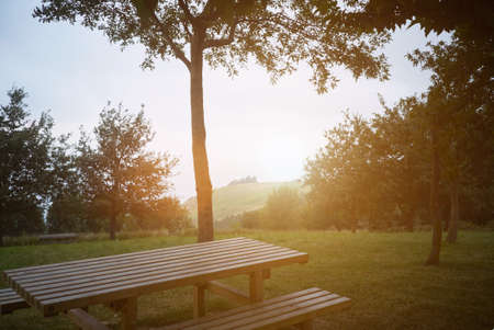 View from a wooden picnic table under a tree over a green hill at sunset